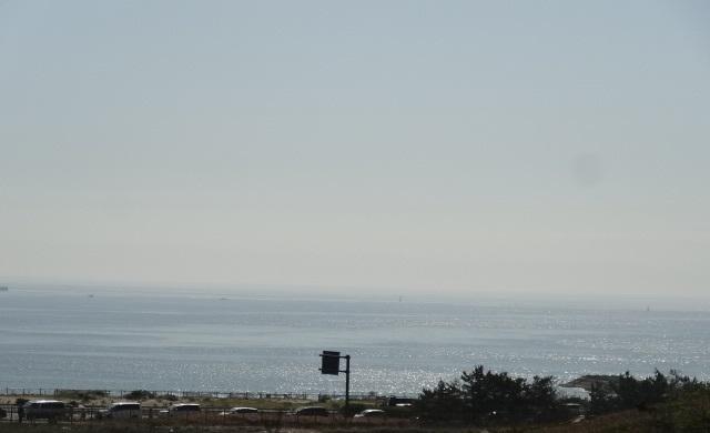 ひたち海浜公園6.jpg