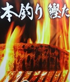 ひろめ市場4.jpg