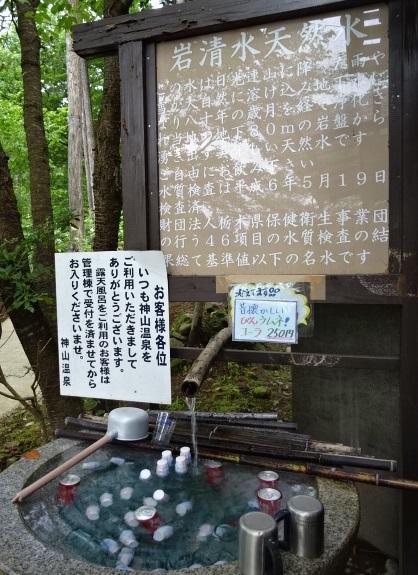 まなかの森2.jpg