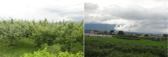 ウェスパ椿山10.jpg