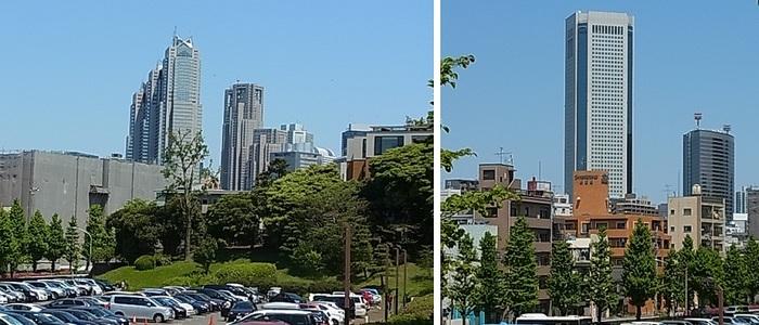 代々木公園2.jpg