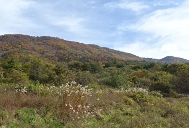 八ヶ岳5.jpg