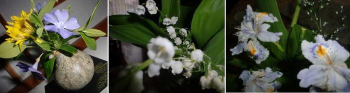 家の中のお花.jpg