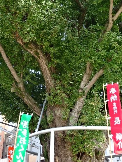 櫛田神社6.jpg