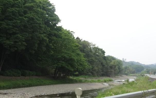 永野5.jpg