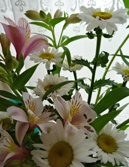白い花7.jpg