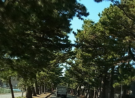 知多半島へ4.jpg