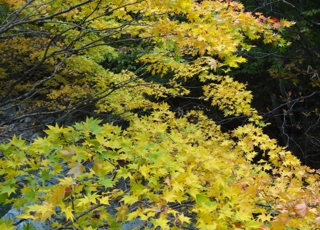 那須岳の北側2.jpg