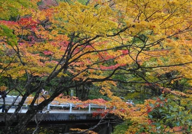 那須岳の北側6.jpg