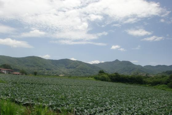 野辺山4.jpg