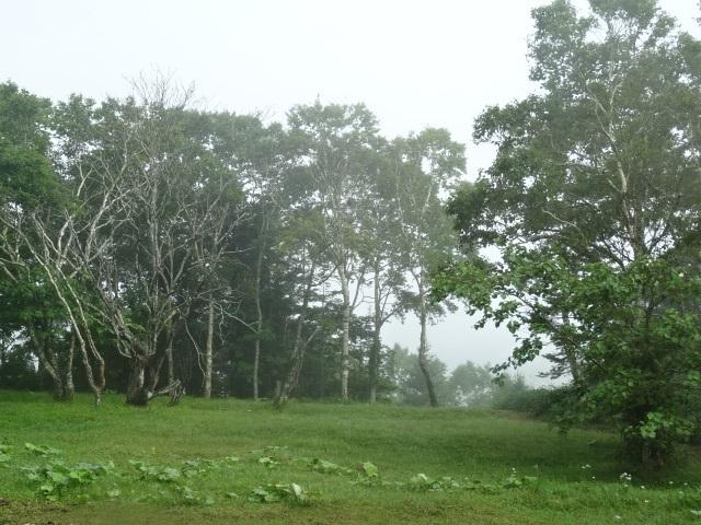 霧多布へ18.jpg