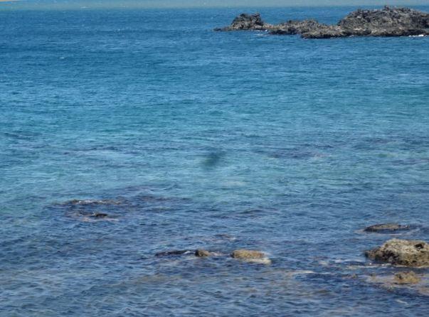 青い海14.jpg