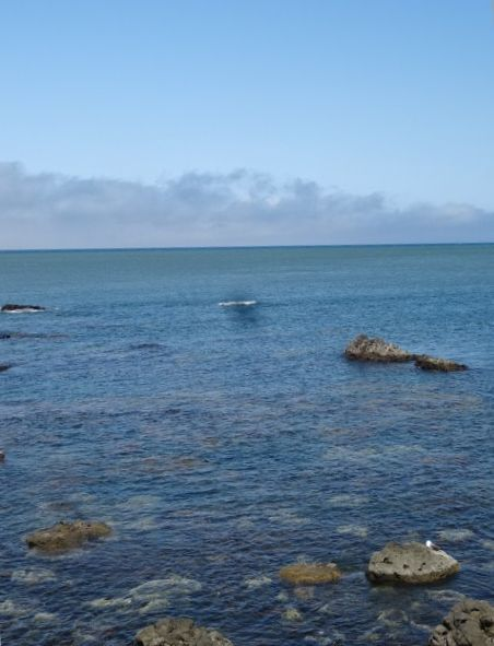 青い海15.jpg